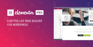 نسخه اورجینال افزونه Eelementor Pro